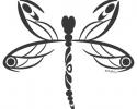 Pretty Brainy; Dragonfly Wings